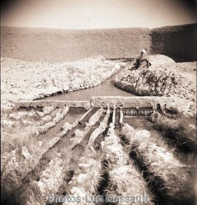 صور لأدرار قديماً قبل الإستقلال B049-6x6-1200-00074.